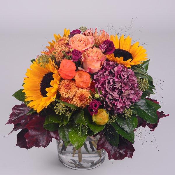 Sunflower Bild 1