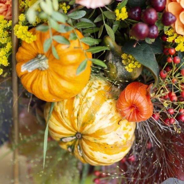 Goldener Herbst Bild 3