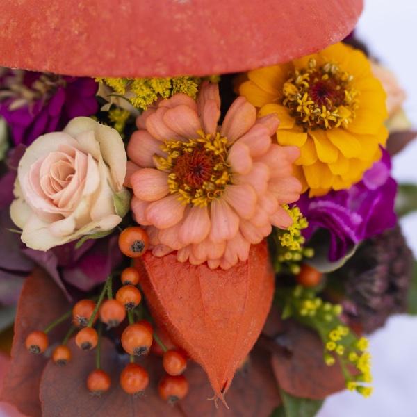 Flowerpumpkin Bild 2