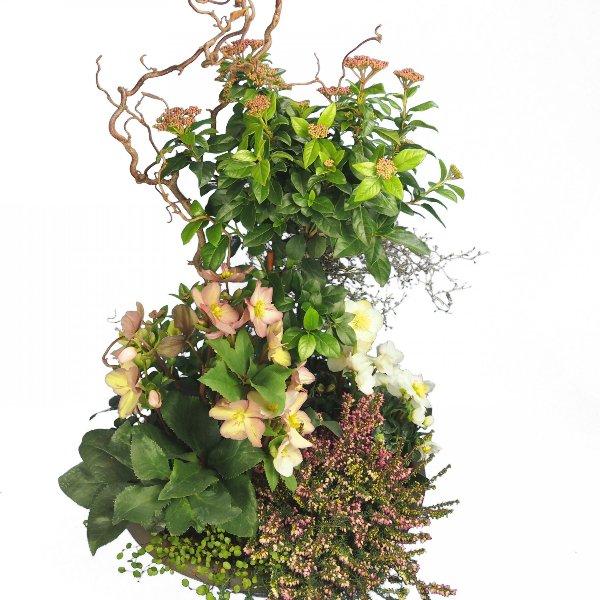 Trauerschale 50cm bepflanzt mit Viburnum-Hochstamm und Korkenzier-Zweigen Bild 2