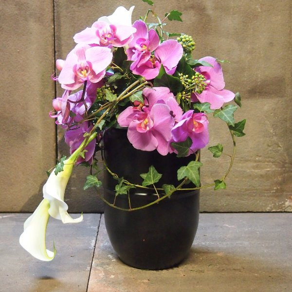 Urnenschmuck mit violett Phalaenopsis-Rispe und weißen Calla  abfließend Bild 2