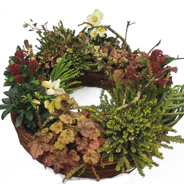 Weidepflanzring winterliche Pflanzenauswahl II Bild 1