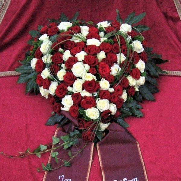 Herz in rot/weiß Bild 1