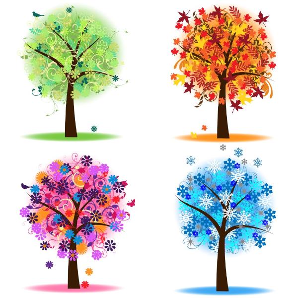 Saisonstrauß in der Farbe Ihrer Wahl Bild 1