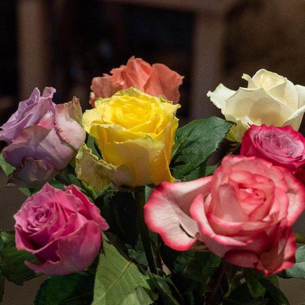 Einfach nur Rosen Bild 1