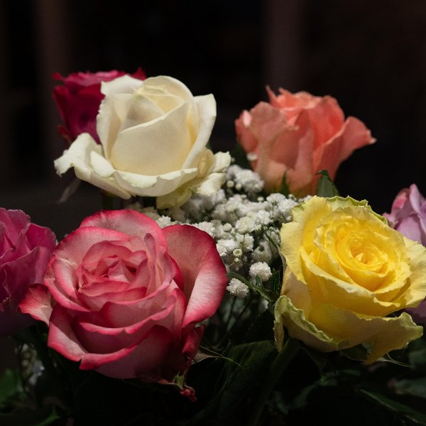 Rosen mit Schleierkraut Bild 1