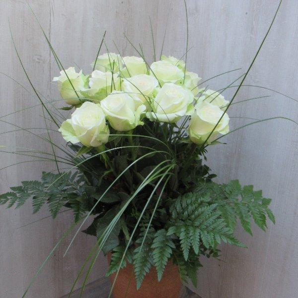 Weiße Rosenstrauß Bild 2