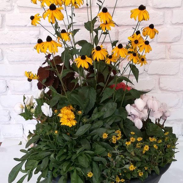 Scha 7   Bepflanzte Schale sommerlich ab 30,00 € Bild 1