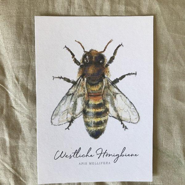 Postkarte Bild 1