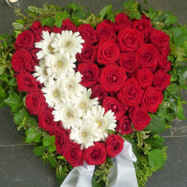 H 8    Herz in rot weiß Bild 1