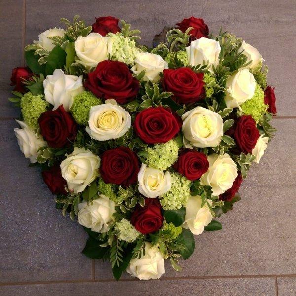 Herz rot- weiß Bild 1