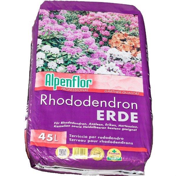 Rhododendronerde Bild 1