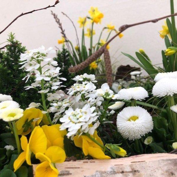 Korb Frühling Bild 2