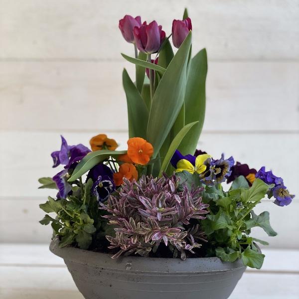 Frühlingsschale 3 Bild 1