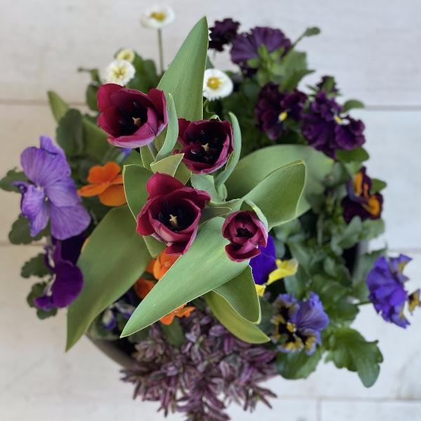 Frühlingsschale 3 Bild 2