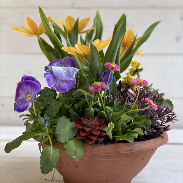 Frühlingsschale 4 Bild 1