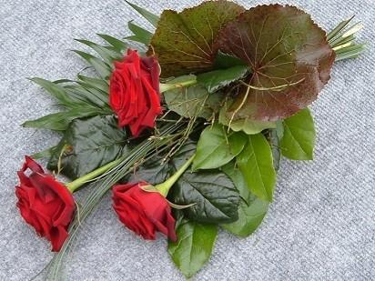 Nachwerfblumen 1 Bild 1