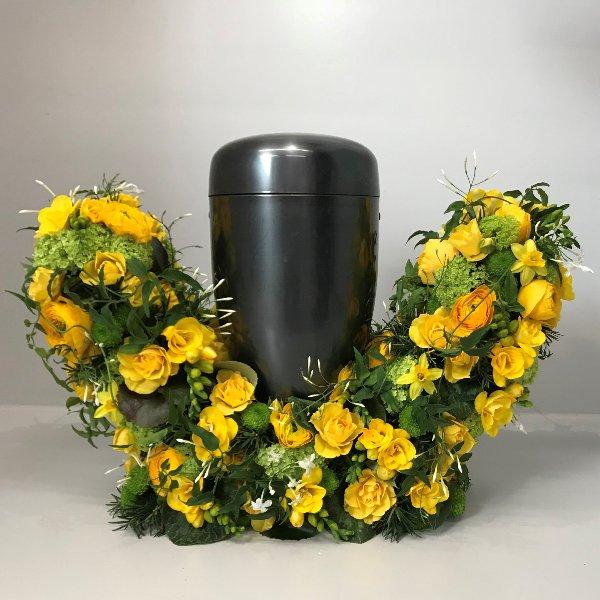 Gelbe Blumenbarke Bild 2