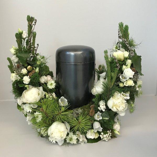 Weiße Blumenbarke Bild 1