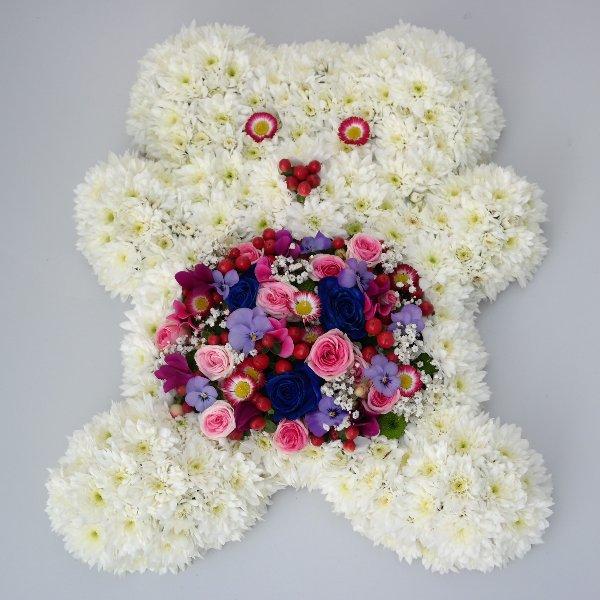 Teddy Bild 1
