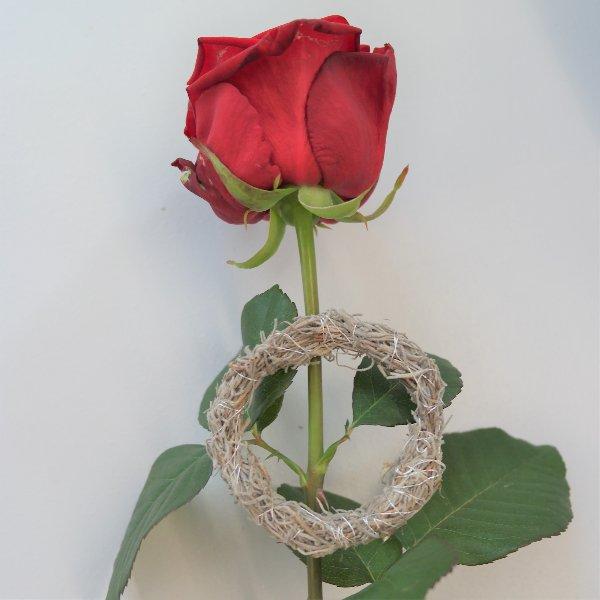 Rose mit Ring Bild 1