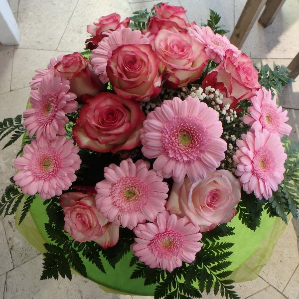 Rosa Töne Bild 1