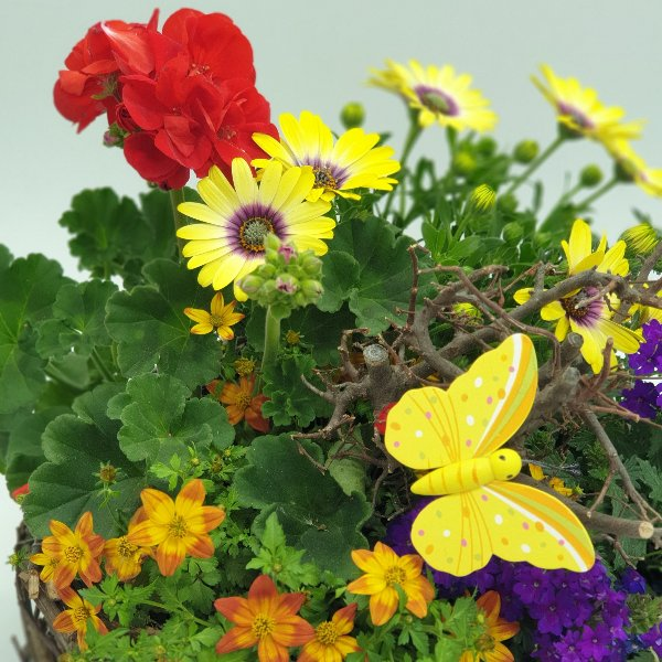 "Blumenkorb ""Muttertagsgrüße"" Bild 2"