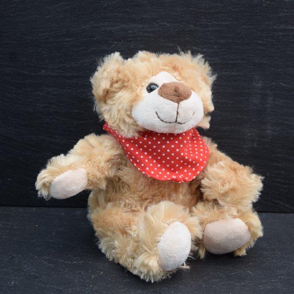 Plüsch-Teddy Bild 1