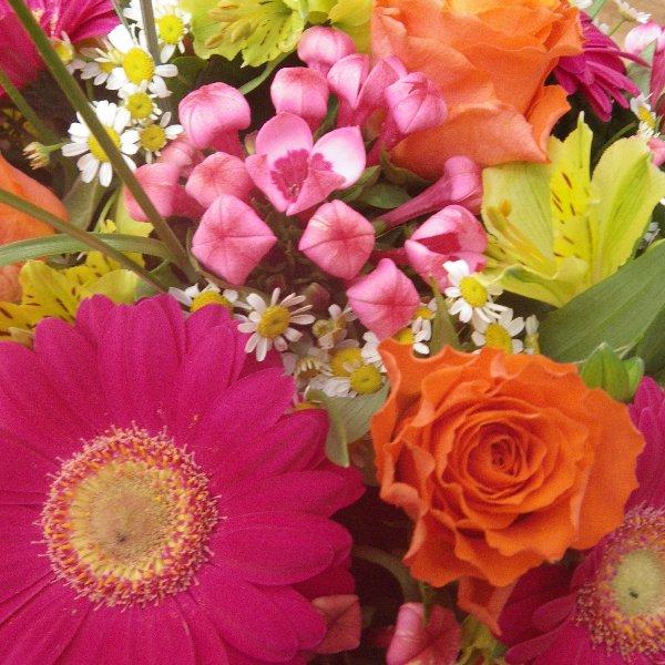 Blumenstrauß in Knallerfarben Bild 1