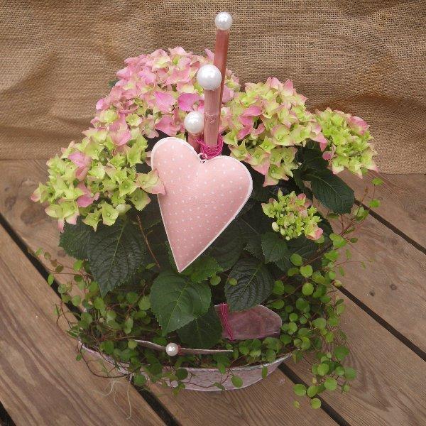 bepflanzte Schale für die Wohnung in rosa Tönen Bild 1