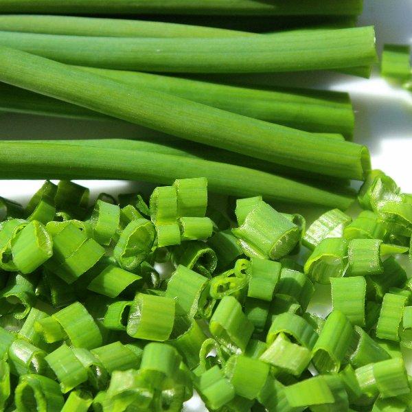 Schnittlauch - Allium schoenoprasum Bild 1