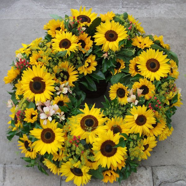 Sommersonne Bild 1